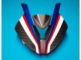 BMW HP4 Race Carbon Kanzel Original Neu
